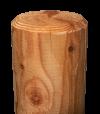 Säulen 100 mm